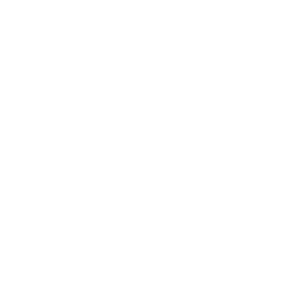 Maurice Hache
